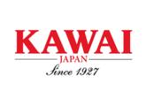 Kawai MR380