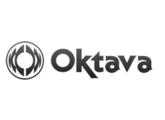 Vends 2x pinces pour Oktava mk-012