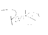 Micro Parker chevalet
