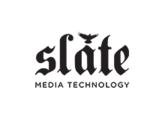 Vends Slate Pro Audio RAVEN MTI