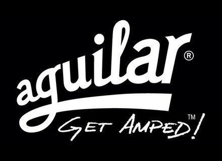 Aguilar Bass guitar parts and accessories