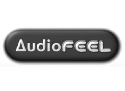 AudioFEEL