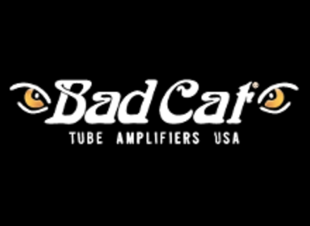 Amplification guitare Bad Cat