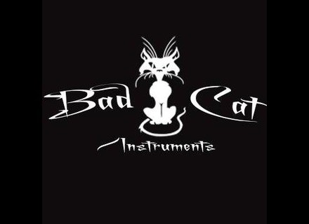 Bad Cat Instruments