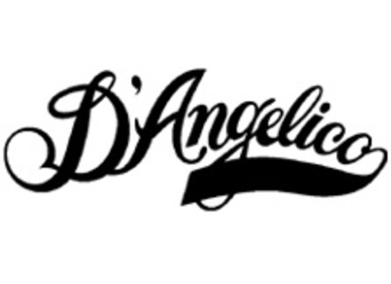 Guitares D'angelico