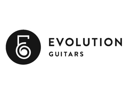 Evolution Guitars