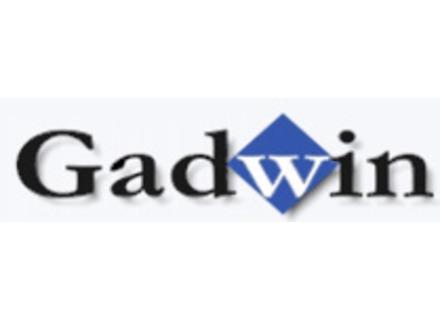 Gadwin