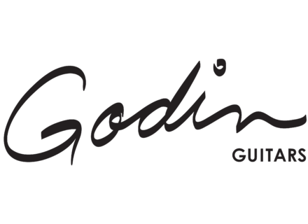 Godin Acoustic Guitars