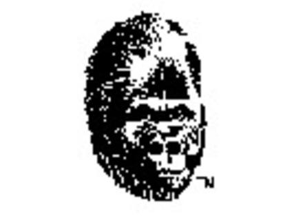 Gorilla Amps
