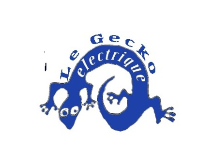 Le Gecko Electrique
