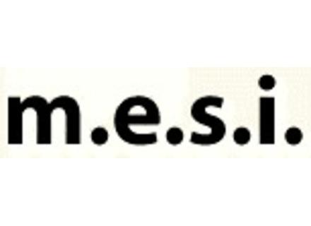 M.E.S.I.