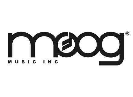 Guitares Moog Music