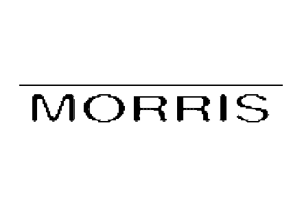 Morris Amps