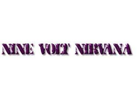 Nine Volt Nirvana