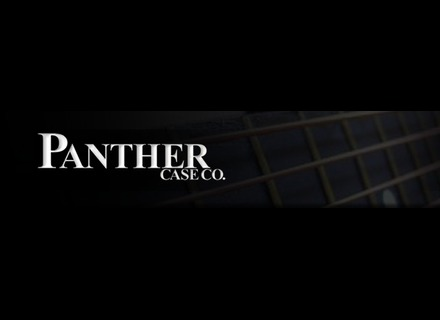 Panther Cases