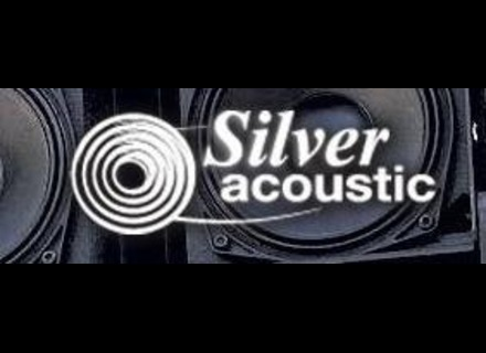 Silver Acoustic