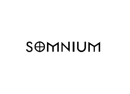 Somnium Guitars