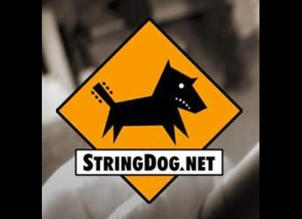 StringDog.net