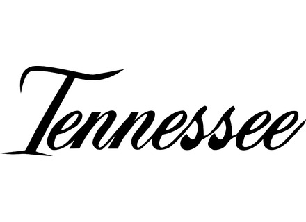 Tennessee Guitars