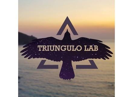 Triungulo Lab