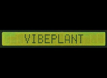 Vibe Plant