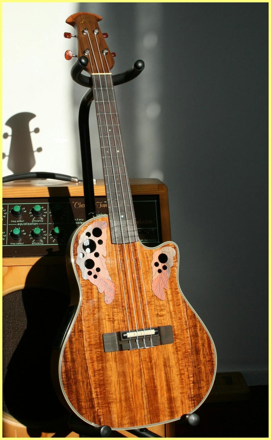 un peu cher pour ce type d 39 instrument mais garde la qualit ovation avis ovation ucs 148. Black Bedroom Furniture Sets. Home Design Ideas