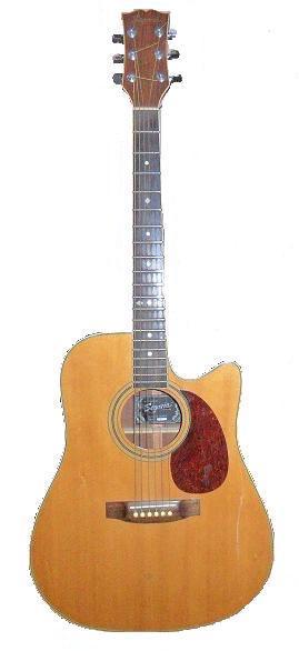 guitare acoustique segovia