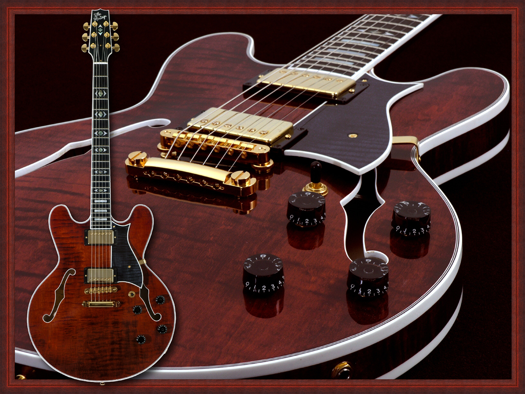The Heritage H 555