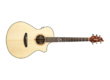 Breedlove Pursuit Concert 25th Anniversary