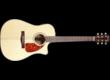 Fender CD-280SCE