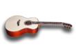 [NAMM] Une guitare luxueuse chez Furch