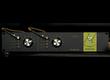 Hendy Amps annonce la tête d'ampli stéréo Minion