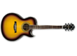Ibanez Joe Satriani Signature Acoustic