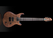 Jericho Guitars Edge 7 - Bolt On