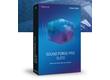 Magix lance Sound Forge Pro 12