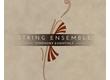 Native Instruments Essentials - String Ensemble