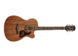 Richwood Guitars Master Series A-50-CE