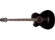 Guitares et basse pour gauchers chez Takamine