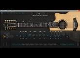 Ample Sound Ample Guitar Twelve III