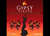 Big Fish Audio Gypsy Fiesta