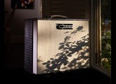 Carr Amplifiers Telstar