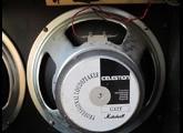 Celestion G12 T (100w/8 Ohms/1994)