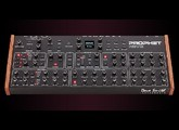 Dave Smith Instruments Prophet Rev2 Module 16 voix