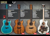 Dean Guitars Exhibition Flame Maple