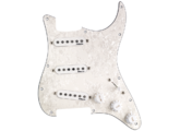 DiMarzio Richie Kotzen Strat Replacement Pickguard