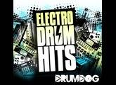 DrumDog Electro Drum Hits