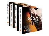 e-instruments eBass - Complete Bundle