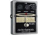 Electro-Harmonix Holy Grail +