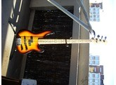 Fender Precision Bass Plus Manual