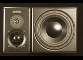 Guzauski-Swist Audio Systems GS-3a